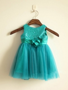 A-line/Princess Scoop Sleeveless Sequin Long Tulle Dresses